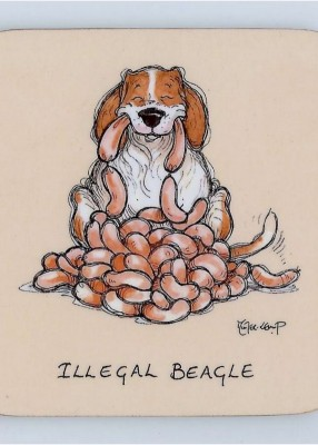 Illegal Beagle coaster